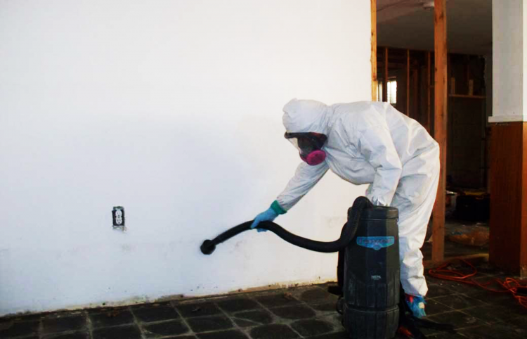 Mold remediation austin tx lower residential remodeling costs water damage mold is very common in homes where the water has leaked or where moisture is left to remain on surfaces if you stop cleaning your shower for a solutioingenieria Images